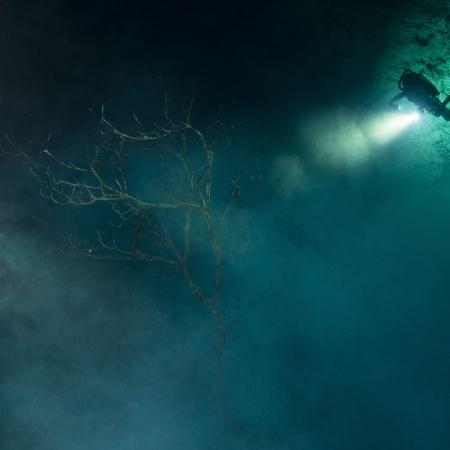 El documental El gran acuífero maya, producido por TV UNAM, forma parte de la selección oficial del Arkhaios Cultural Heritage and Archaeology Film Festival de la Universidad de Carolina del Sur, Estados Unidos.